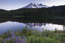 Pico nevado Mount Rainier en Washington, Estados Unidos - foto de stock
