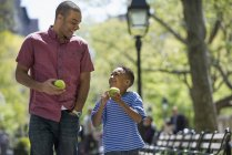 Mid adult man and elementary age boy eating apples in sunny park. — Stock Photo