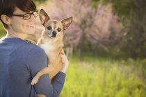 Молодая женщина Холдинг и обнимать Чиуауа Собаки на траве поля в парке — стоковое фото