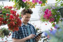 Mid adult man using digital tablet in flower greenhouse of plant nursery. — Stock Photo