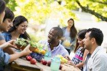 Друзья, сидя на открытый стол в саду с фруктами и овощами. — стоковое фото