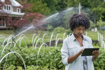 Mid adult woman using digital tablet at organic horticultural farm nursery. — Stock Photo