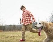 Підлітком проведення палицю і працює з золотистий ретрівер собака. — стокове фото