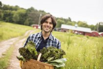 Man carrying basket of freshly picked organic vegetables on organic farm. — Stock Photo