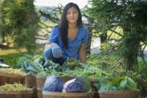 Young woman gardening in agricultural garden with baskets of fresh vegetables. — Stock Photo