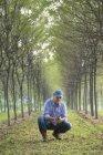 Человек в cap Крадущийся и изучения горсть почвы в парке с рядами деревьев — стоковое фото