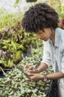 Femme adulte moyenne utilisant une tablette numérique dans une pépinière horticole biologique . — Photo de stock
