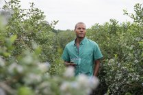 Man standing with freshly picked blueberries at organic fruit orchard. — Stock Photo