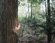 Braccio maschio che abbraccia il tronco d'albero in foresta verde — Foto stock