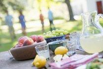 Подається відкритий таблиці з фруктів і лимонад з людьми у фоновому режимі — стокове фото