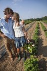 Young couple embracing in farm field and holding basket of harvested crops. — Stock Photo
