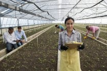 Young woman holding clipboard with documentation in greenhouse of plant nursery with working gardeners. — Stock Photo