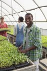 Young man tending seedlings and smiling with friends gardening in greenhouse. — Stock Photo