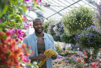 Mid adult man with protective gloves standing in greenhouse of plant nursery. — Stock Photo