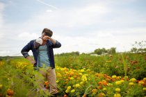 Male farmer wiping forehead in field of yellow and orange organic flowers. — Stock Photo