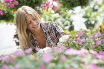 Femme blonde qui tend les plantes à fleurs et feuillage vert en pépinière. — Photo de stock