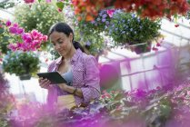 Young woman using digital tablet in flower greenhouse of plant nursery. — Stock Photo