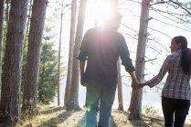 Вид сзади пары, идущей рука об руку в лесу на берегу лесного озера . — стоковое фото