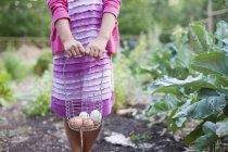 Menina pré-adolescente segurando cesta de arame de ovos de galinha frescos . — Fotografia de Stock