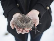 Cropped view of young woman holding bird nest in hands. — Stock Photo