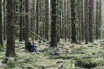 Человек сидит среди покрытых мхом ели в пышных тропических лесов в Вашингтоне, США — стоковое фото