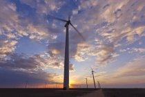 Wind farm turbines at sunset in Roscoe, Texas, USA — Stock Photo