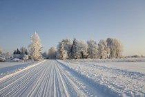 Route de campagne couverte de neige en Estonie — Photo de stock