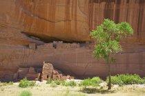 Індійська Скеля житла в скелі пустелі, Арізона, США — стокове фото