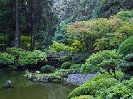 Японський сад з ставком і мостом в Портленді, США — стокове фото