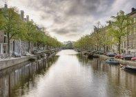Boote im von Bäumen gesäumten Kanal in Amsterdam, Niederlande — Stockfoto