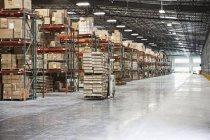 Boîtes en carton sur des étagères dans l'entrepôt, Sumner, Washington, Etats-Unis — Photo de stock