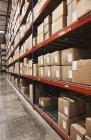 Caixas de papelão em prateleiras no armazém, Sumner, Washington, EUA — Fotografia de Stock