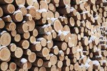 Empilement de grumes en bois avec neige en hiver, cadre complet — Photo de stock