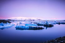 Ледниковые айсберги, плавающие на отдаленном озере на восходе солнца в Исландии — стоковое фото