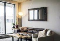 Sofa, Topfpflanzen und Sessel in der Nähe von Wohnzimmerfenster — Stockfoto