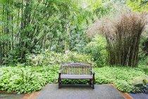 Bench in lush park, Portland, Oregon, United States — Stock Photo