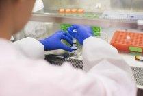 Wissenschaftlerhände mit Spritze und Petrischale — Stockfoto