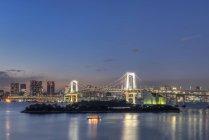 Tokio Stadtsilhouette leuchtet nachts, Tokio, Japan — Stockfoto