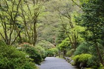 Gravel walkway in Japanese Garden, Portland, Oregon, United States - foto de stock