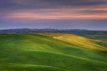 Collines verdoyantes dans le paysage rural de Palouse, Washington, États-Unis — Photo de stock