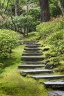 Passi di pietra in Japanese Garden, Portland, Oregon, Stati Uniti — Foto stock