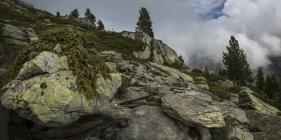 Sendero al Monte Blanc, Suiza - foto de stock
