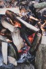 Крупный семх горящих деревянных бревен костра в лесу. — стоковое фото