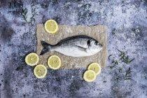 Vista superior de peixes frescos do bream do mar decorados com fatias de limão e de Rosemary fresco. — Fotografia de Stock