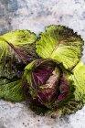 Bodegón de col verde fresca y hojas en la mesa - foto de stock