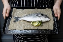 Midsection of person holding baking tray with fresh sea bream and slices of lemon and rosemary sprigs. — Stock Photo