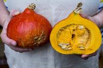 Primer plano de las manos de la persona sosteniendo la calabaza con la carne naranja cortada por la mitad. - foto de stock