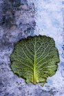 Naturaleza muerta de una sola hoja de col con tallo estampado y bordes verdes arrugados sobre fondo texturizado - foto de stock