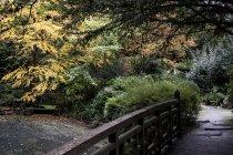 Ponte pedonale e arbusti nel giardino in stile giapponese nell'Oxfordshire, Inghilterra — Foto stock