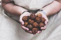Close-up de pessoa segurando nozes frescas nas mãos . — Fotografia de Stock